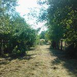 landschaftspflege_02
